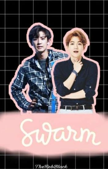 SWARM(ChanBaek)