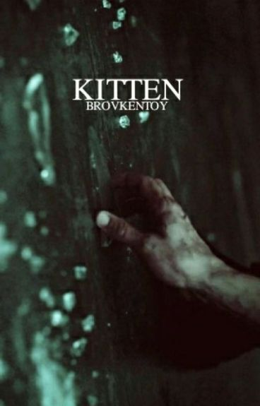 Kitten ;muke