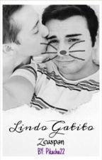 Lindo Gatito by Pikacha22