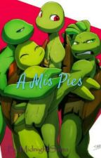 A Mis Pies [Yaoi Tmnt] by MidnightSama