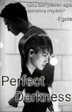 Perfect Darkness (Kusursuz Karanlık) by Egolice978