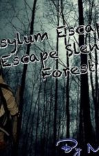 Asylum Escape 2: Escape Slender Forest by midnight-12