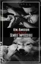 Un amour qui semble impossible by neko972