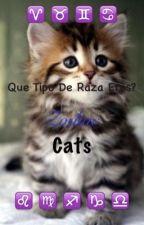 Zodiac cats  by tsun6ere