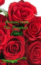 Aishah(RA) and the Prophet(SAW) by Jannat8