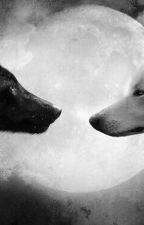 Альфа и Омега.  by BolkOdino4ka