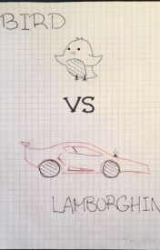 Bird vs Lamborghini by Tee_Hee_Heee