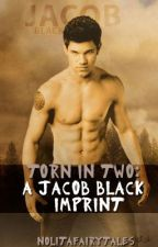 Torn in Two: A Jacob Black Imprint by NoLitaFairytales