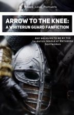 Whiterun Guard X Reader: Arrow to the Knee by memes_love_poptarts