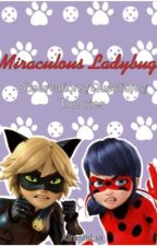 Miraculous Ladybug Theories And Thoughts by AirashiLia