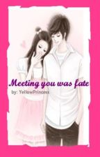 Meeting You Was Fate (Completed) by YellowPrincess