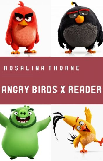 Angry Birds x Reader