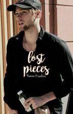 Lost Pieces • lrh [✓] by namzcake