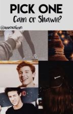 PICK ONE | CAM or SHAWN? (Cameron Dallas & Shawn Mendes) by MayritzaAurell
