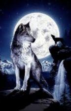De Dochter Van Sirius Zwarts  by Tamar-Annabel