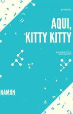 Aquí, KITTY KITTY (BTS-Namjin) Adaptacion by KimMin957