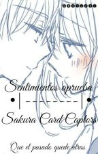 •|los sentimientos  aprueba|• sakura&shaoran by gavijavi