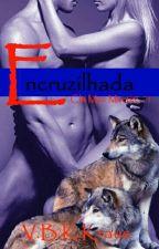 Encruzilhada by VBKKraus