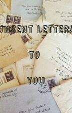 Unsent Letters to You by Sheetnix