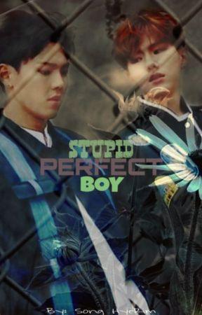 Stupid Perfect Boy by HyeRimSong