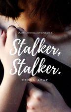 Stalker, Stalker |✔️ by insanebrr_