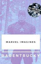 «Marvel Imagines » [ReaderxCharacter] by agentbucky
