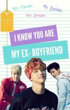 I Know, You Are My Ex-Boyfriend /BINHWAN/JUNHWAN by larasafrilia1771