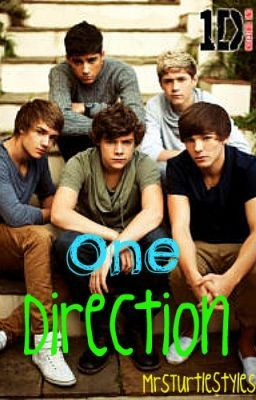 One Direction Fan Fiction :) (On Hold)