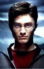 Harry New Lover (Harry Potter × Reader) by cielgirl1