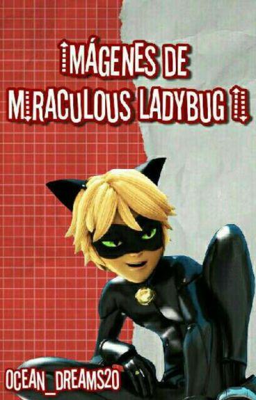 Imágenes de Miraculous Ladybug II