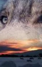 Nei tuoi occhi by DreamAngel22