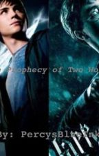 The Prophecy of Two Worlds: A Harry Potter/Percy Jackson Crossover Story by PercysBlueInk