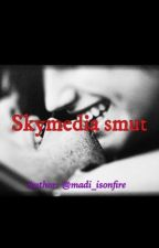 Lemon one shots with Skymedia by madi_isonfire