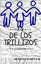 1/3 de los trillizos Hudson [PAUSADA] by ariadna_sandoval