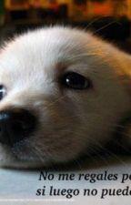 El diario de un perro by -oddeye