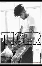 Tiger • Ziam by -mydarkside