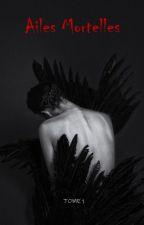 Ailes Mortelles by Raven842