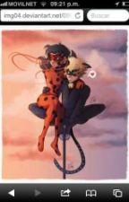 Un Sueño Se Hiso Realidad( Miraculus Ladybug ) by samy5678