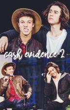 cash evidence 2  by flirtatiouscash