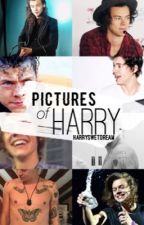 pictures of harry by harryswetdream