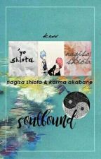 soulbound » karmagisa by fuckuroodani