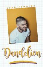 Dandelion // z.m [EDITING] by saphirewords