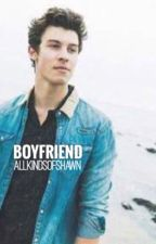 Boyfriend (A Shawmila Fanfiction)  by AllKindsOfShawn
