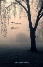 El eterno efímero by Vaikha