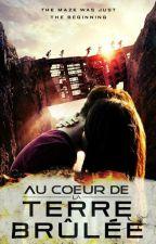Au Cœur De La Terre Brûlée  by mysticsquirrrel