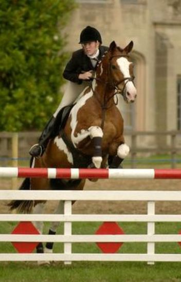 Striving for Show Jumping