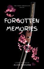 The Forgotten Memories by alizesakura