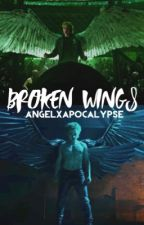 Broken Wings by AngelxApocalypse