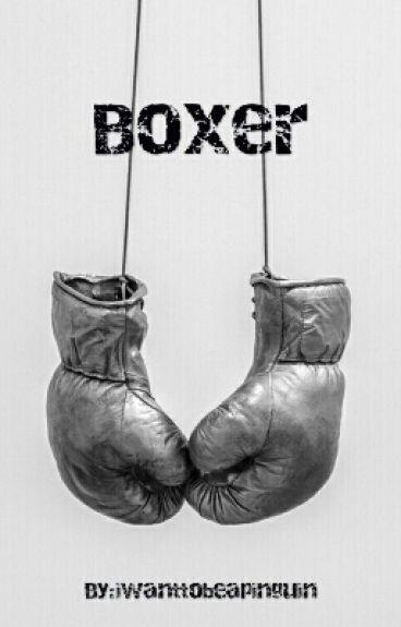 Boxer||Shawn Mendes