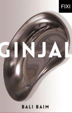 GINJAL - sebuah novel Bali Baim by BukuFixi
